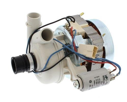 Wash Pump: DW: Hotpoint