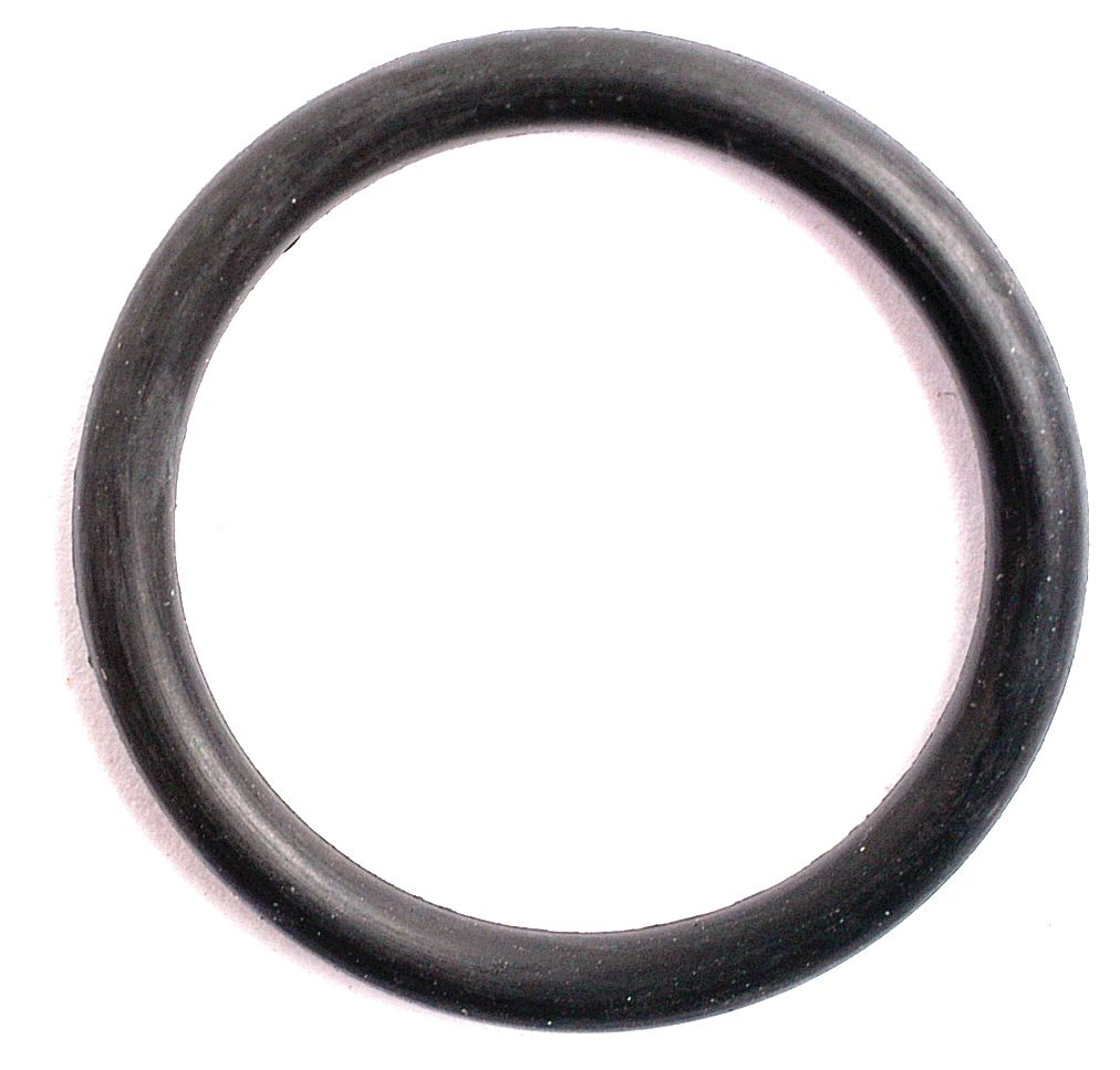 "FORD NEW HOLLAND O'RING-3/4""X15/16"" 1916"