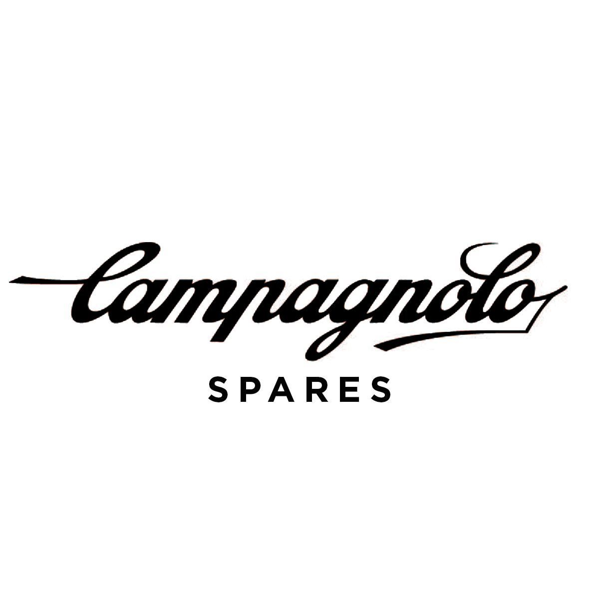 Campagnolo Spares Rear Derailleur Eps Rd-Sr130 - Pulleys Fixing Screw 11 Speed (2 Pieces):