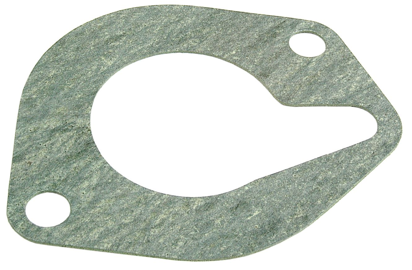 LANDINI GASKET-THERMOSTAT